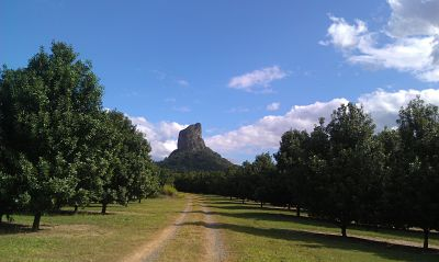 "Mount Coonowrin is also known as ""Crookneck"""