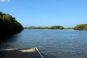 pontoon on Maroochy River at Maroochy Wetland Sanctuary